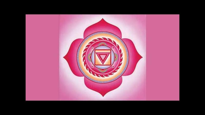 Активация: Первая (корневая) чакра Муладхара / Muladhara chakra