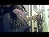 Grindcore bass - training (spector performer)