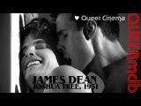 Joshua Tree, 1951: A Portrait of James Dean (US 2012) -- schwul | gay themed