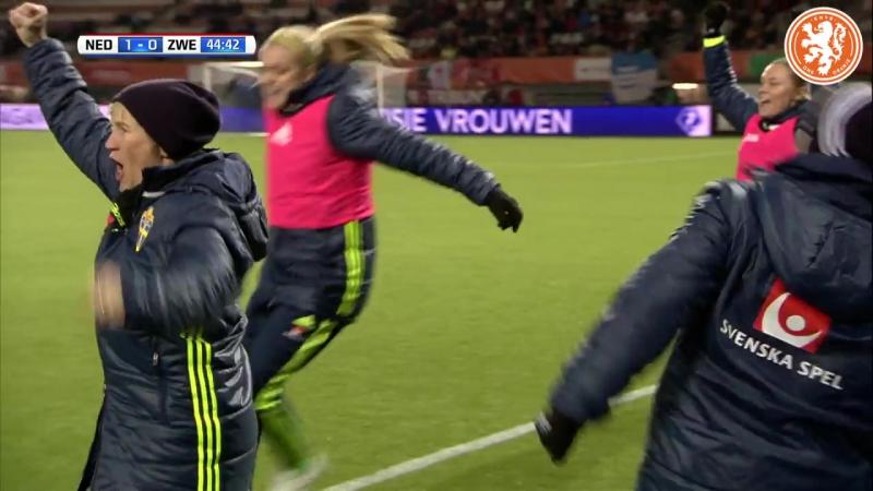 Samenvatting Nederland - Zweden (1-1).
