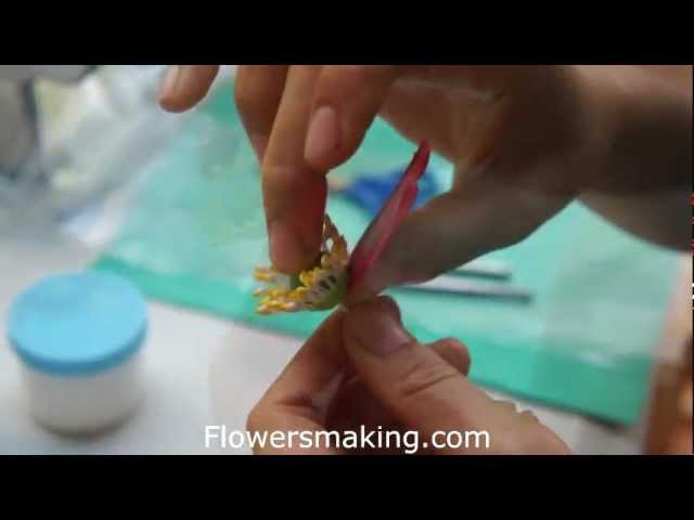 Peony clay Flowers making