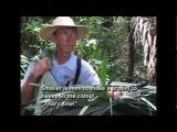 Spanish Lookout (Belize) History Part1