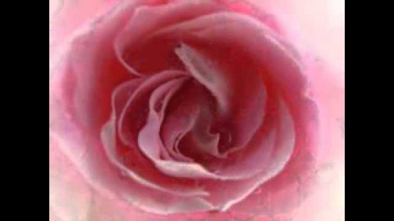 Liebe ist stark (красивая немецкая христианская песня) - Любовь есть сила, любовь сильна