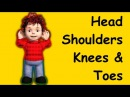 Head Shoulders Knees and Toes | Family Sing Along - Muffin Songs