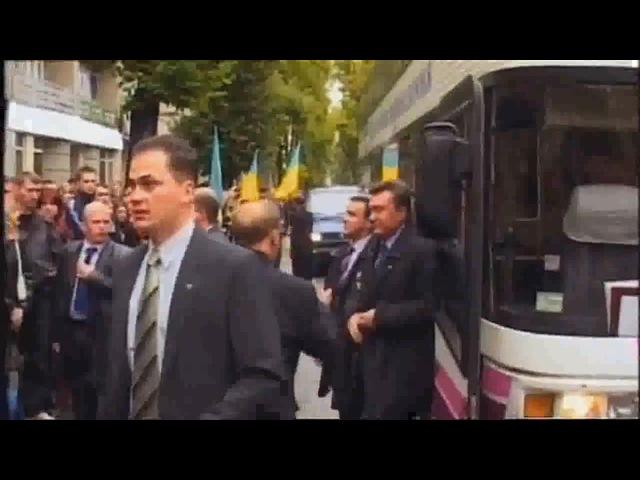 Янукович упал от удара яйца