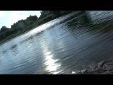 рыбаки поймали рыбу при певце пророке сан бое на реке вопь в ярцеве