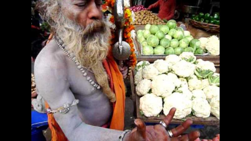 Amazing Shiva Raja Giri Sadhu blames Monsanto Mother India Delhi Aum O