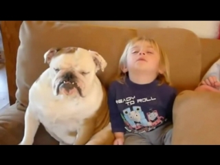 Perro y bebe durmiendo!! se quedan dormidos mientras ven tv!! mascotas graciosas