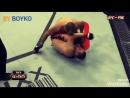 Junior Dos Santos vs Cain Velasquez l|BY BOYKO