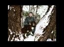Alexei Romanov Цесаревич Алексей Николаевич Tribute Посвящение