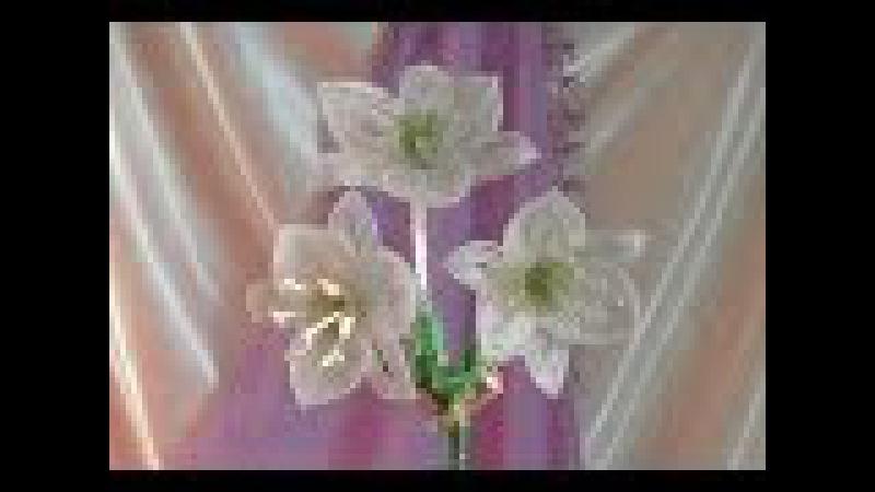 Амазонская лилия из бисера. Урок 1 - Материалы / Beaded amazon lily. Lesson 1 - Supplies