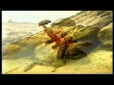 Vaya Con Dios- Don't Break My Heart HD