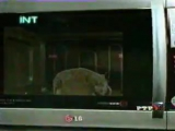 staroetv.su | Рекламный блок (РТР, сентябрь 2001) 4