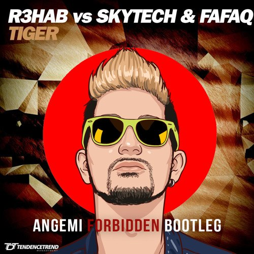 R3hab vs. Skytech & Fafaq – Tiger (ANGEMI Forbidden Bootleg)