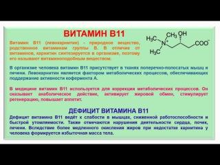 № 197. Органическая химия. Тема 28. Витамины. Часть 15. Витамин В11