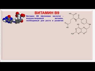 № 195. Органическая химия. Тема 28. Витамины. Часть 13. Витамин В9