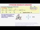 № 11. Органическая химия. Тема 6. Алканы. Часть 3. Строение молекул алканов