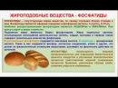 № 125. Органическая химия. Тема 20. Жиры. Часть 13. Жироподобные вещества. Фосфатиды