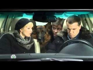 Возвращение Мухтара 2  10 сезон 6  серия -  Деликатес