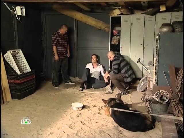 Возвращение Мухтара 2 - сезон 8 серия 31