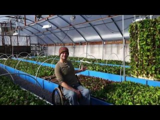 Free Webinar - Closed Loop Aquaponics Combining the Sciences of Permaculture & Aquaponics