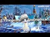 ZOOBE зайка Поздравление С Рождеством !3