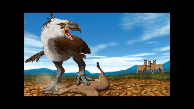 Доисторические хищники — Хищные птицы ящеры (Документальные фильмы HD)