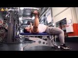Мышцы груди  Сведение рук с гантелями лежа