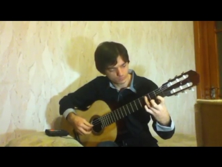 Skrillex - Scary Monsters and Nice Sprites (guitar cover, acoustic version)