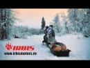Снегоход DINGO T125