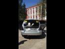 Путин машет рукой - наклейка на авто