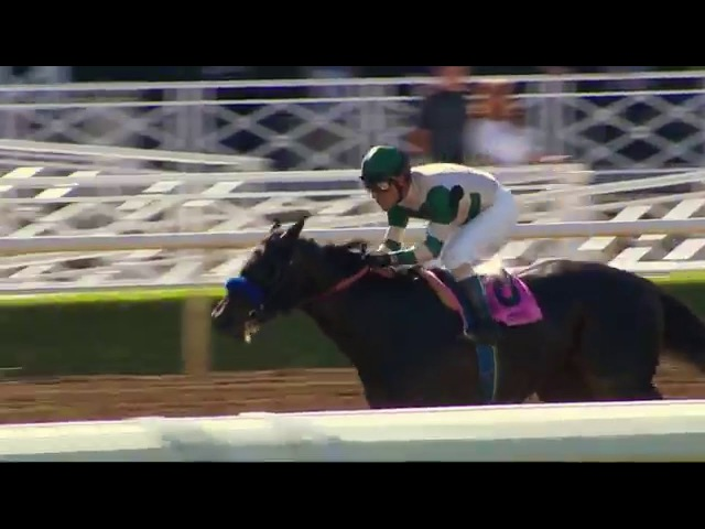 Can Mor Spirit Escape American Pharoah's Shadow