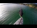 GoPro Awards Orca vs Paddle Board