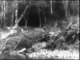 Аэроград— 1935. Киностудия Довженко. Старые советские фильмы.