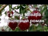 Галина Невара - Вишневый роман