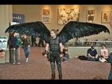 Fallen Angel Wing Costume  Articulating Wings