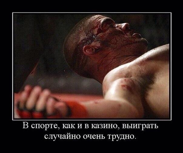 https://pp.userapi.com/c627820/v627820312/232b8/LkYS79qjgdo.jpg