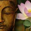 Buddha Town 💆 Тайский массаж и СПА