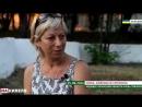 Животная ненависть сотрудницы департамента науки и образования Луганска к 97% своих сограждан