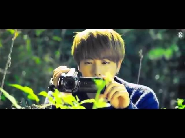 Bangtan Boys-I need u and butterfly