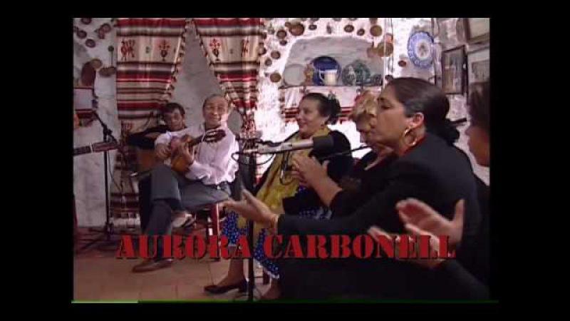 Puro Flamenco |Buleria