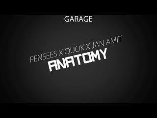 Pensees x Quok x Jan Amit - Anatomy
