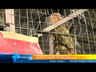 В деле о крушении малазийского Боинга в небе над Донбассом появились новые подробности