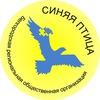 """""""Синяя птица"""", общественная организация"""