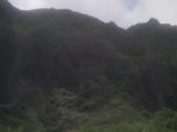 Hawaii Five-O Season 9 Episode 15 Elegy in a Rain Forest