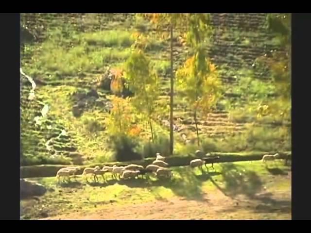 Canto de las Ñustas - Ollantay - Alcione Vera Zamalloa ( Subtitulado Quechua )