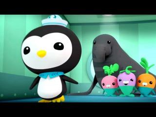 Мультики для детей: ОКТОНАВТЫ! Октонавты и огромный морской слон. Морские приключения.