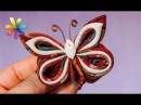 Самое модное украшение – бабочка! – Все буде добре. Выпуск 710 от 24.11.15