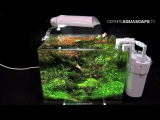 The Art of the Planted Aquarium 2015 - Scaper's Tank (Nano) category, part 8