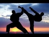 Секреты боевых искусств Эксперименты